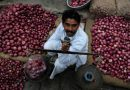 Tenfold rise in onion prices leaves Indians teary-eyed
