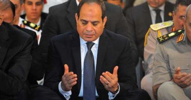 OPINION: Sisi's Rural Development is a War on Religious Extremism